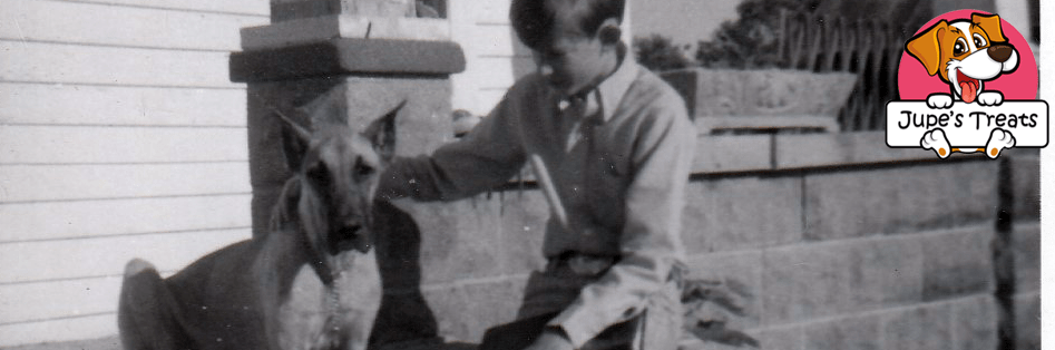 great dane and boy