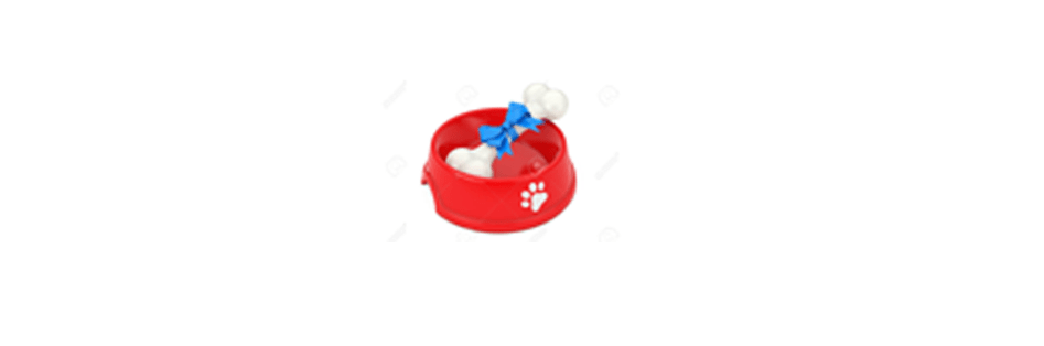 dog gift idea