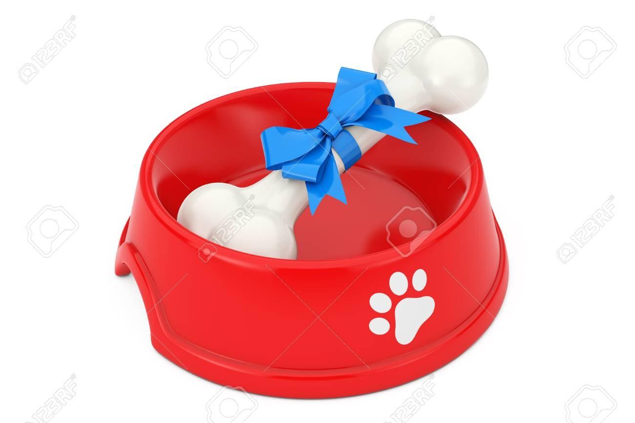 dog bowl and eeders
