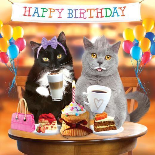 Happy Birthday kitty kat!