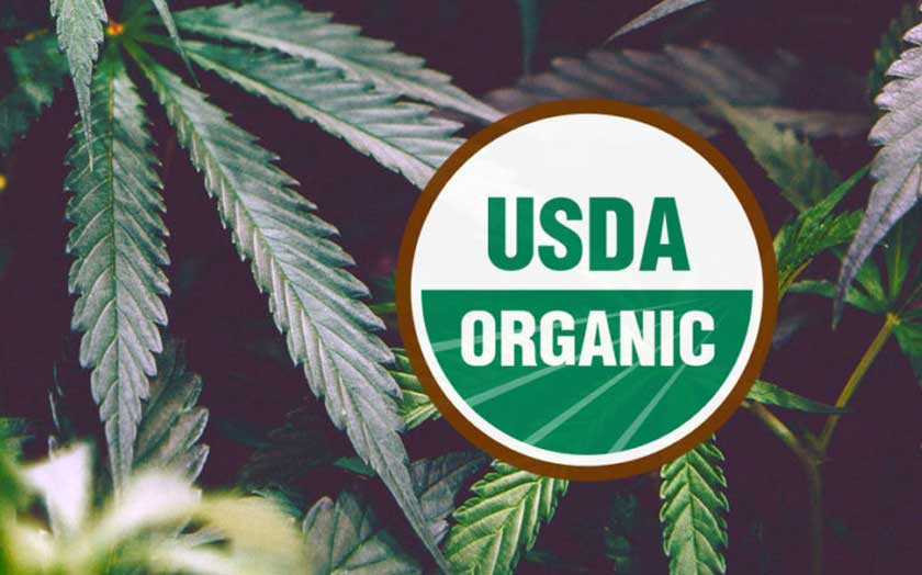 USDA Organic Hemp